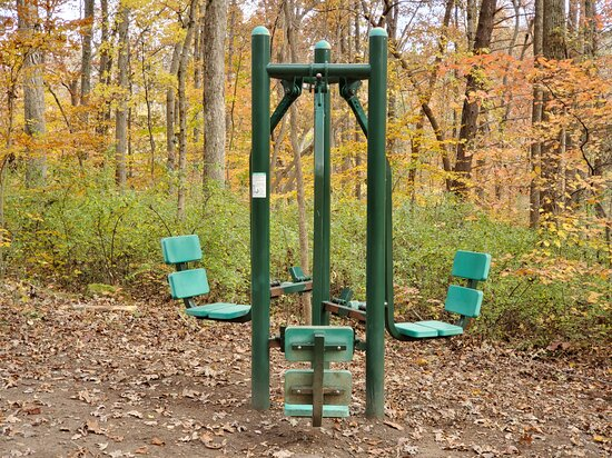 Summerfield Community Park