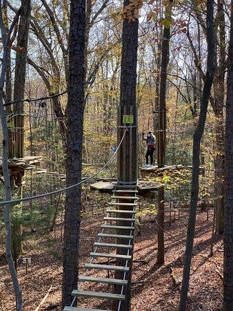 Zig Zag Picture Of Go Ape Zipline Adventure Park Raleigh Tripadvisor
