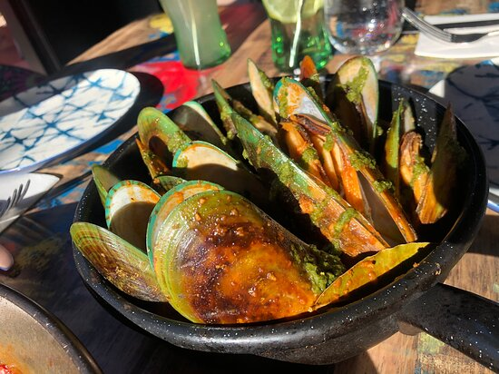 Huge fresh green lip mussels in a smoked red suace