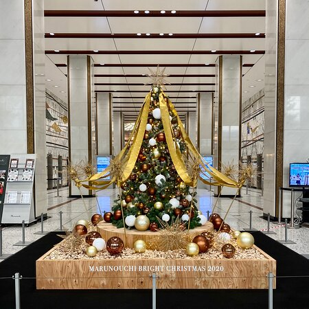 丸の内仲通り沿いのビルに飾られたクリスマスツリー