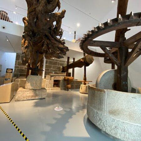 Começamos a nossa visita pela sala número 1 que tem a forma de uma azeitona, onde se encontra o lagar romano e o lagar de varas.🌿😋