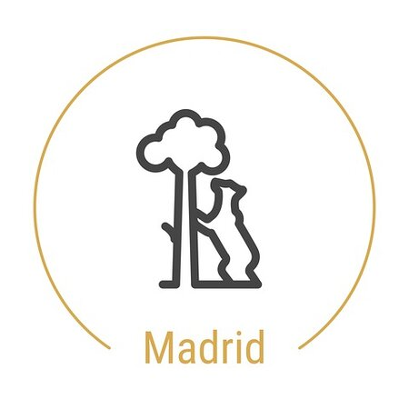 ‪Local Madrid Experiences‬