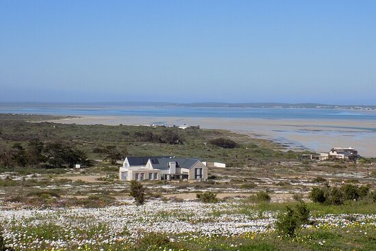 South Africa West Coast Full-Day Private Tour