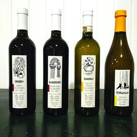 Monte San Pietro, إيطاليا: I nostri vini