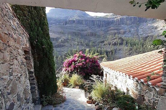 Visite en petit groupe des points forts de Gran Canaria avec prise en...