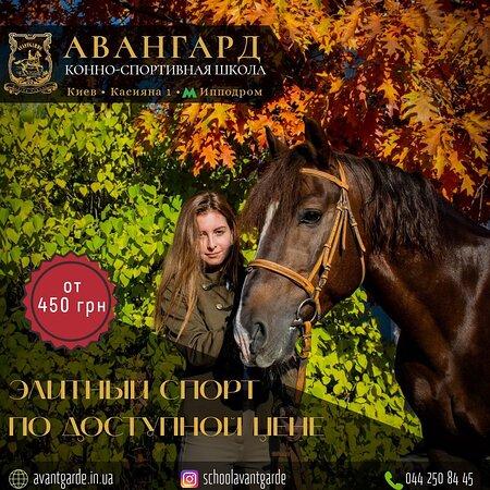 Avantgarde Horse Riding School