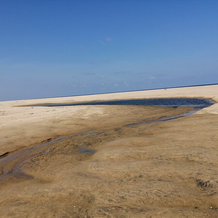 Pulicat, Индия: Worth Day Out!