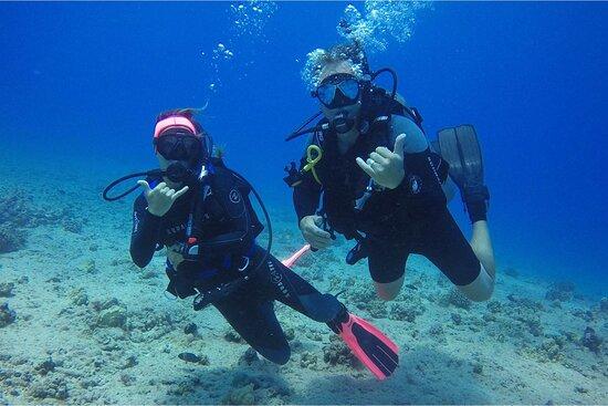 Waikiki Dive Center, LLC