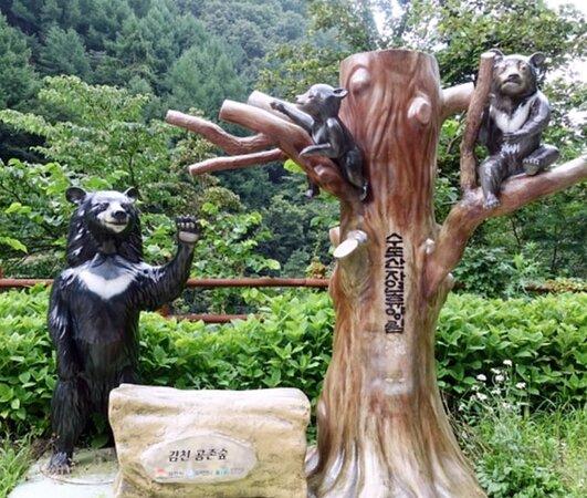 Sudosan Recreational Forest