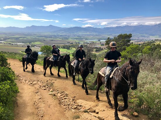 Paarl, Afrique du Sud : Can we just take a second to appreciate this stunning view.😊 We have a variety of options for both experienced and inexperienced riders. Visit our website to make your booking.