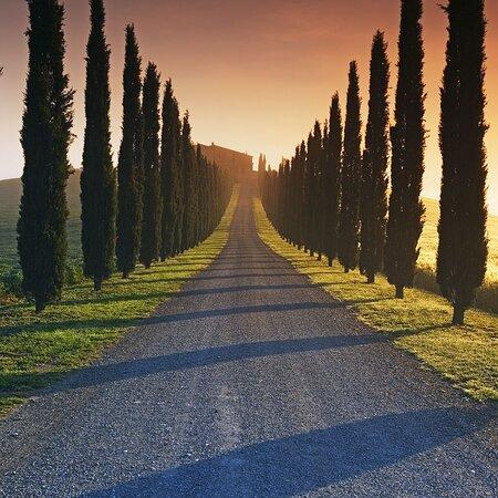 Moro Tuscany Travel