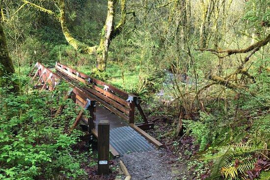 Treasure Hunt Thru Time Northwest Hike
