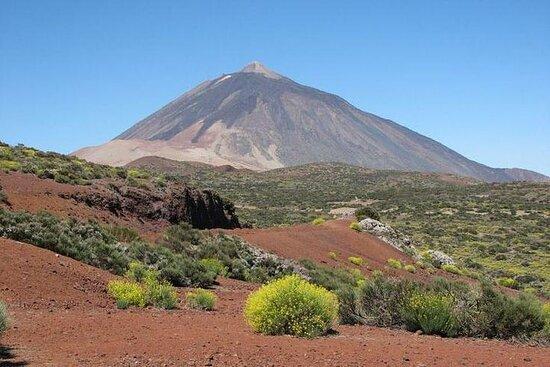 Excursión al monte Teide y el Valle...