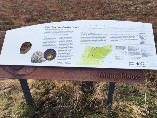 Moine Mhor National Nature Reserve