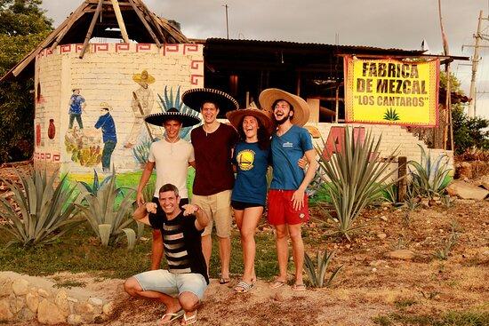 Puerto Mezcal Tours