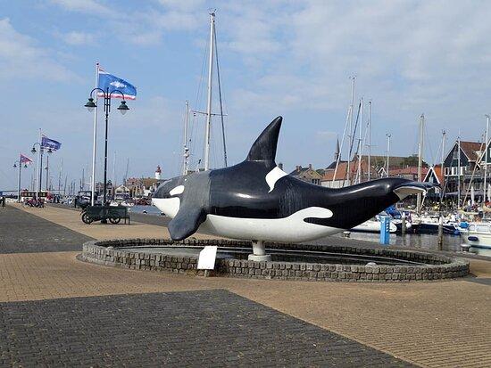 De Orca