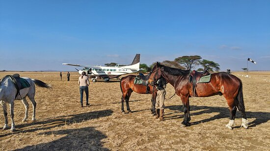 Chyulu Hills National Park, Kenya: An adventure to the airstrip