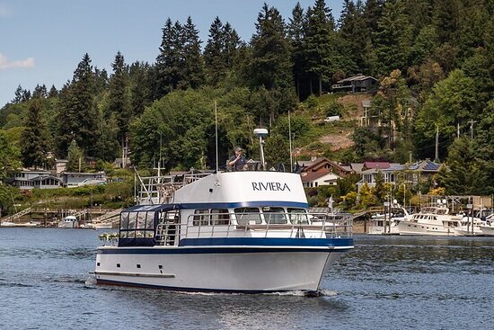 1-Hour Private Single Household Boat Cruise from Gig Harbor