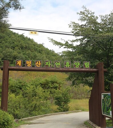 Gyemyungsan Nature Recreation Forest