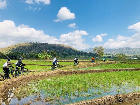 Moana - Yogyakarta's Authentic Bicycle Tour