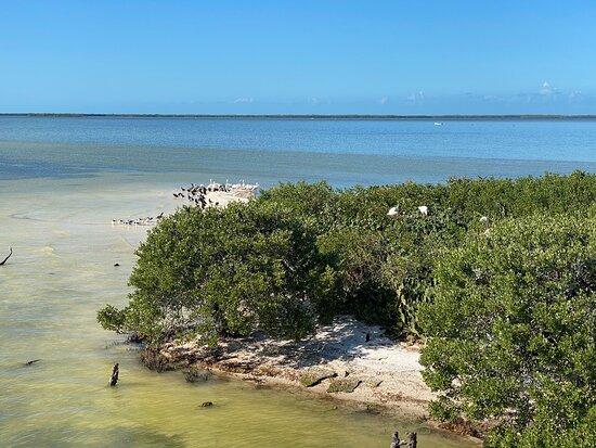 Isla De La Pasión