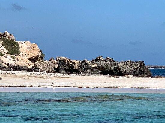 Foto de Jurien Bay