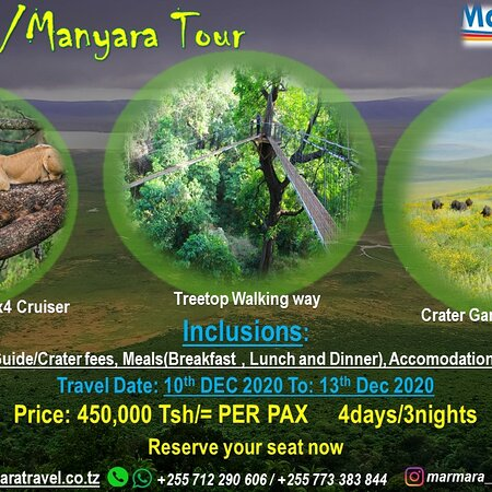 Dar Es Salaam Region, Tanzanija: Ngorongoro/Lake Manyara Tour. This December. Contact us now for more details.