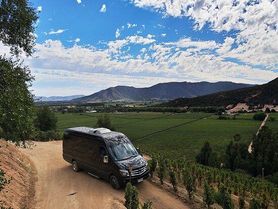 Santa Cruz, Chile: Colchagua Wine Tours - Group Transport