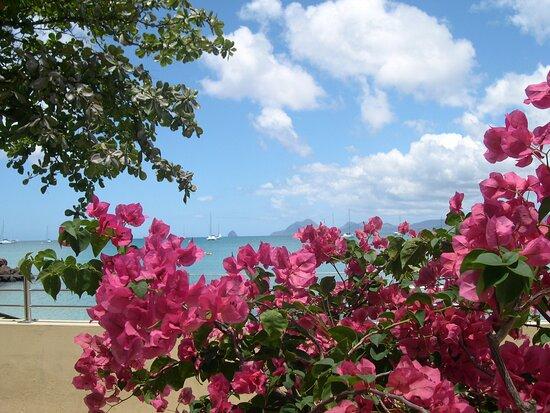 סנט אן, מרטיניק: Souvenirs de mes Voyages --- France -- Antilles -- Martinique -- La baie de St Anne et en fond le rocher du Diamant .20.11.29