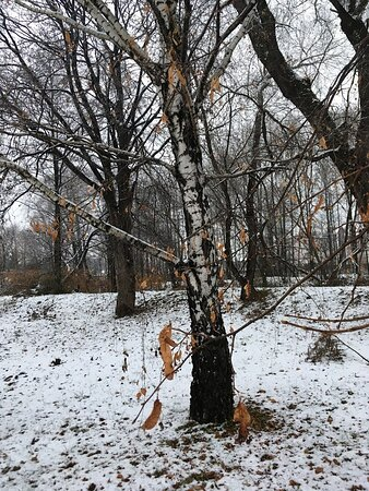 Bielsko-Biala, Poland: At the end of November we have the first snow this autumn in Bielsko-Biała, PL :)