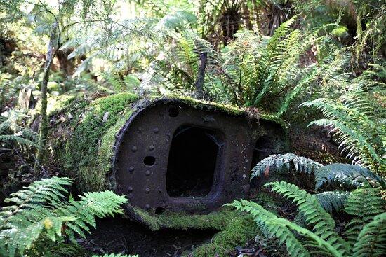 Mawbanna, Úc: Nature reclaiming the Boiler