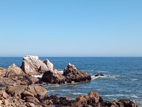 Bahía Luz Hostal
