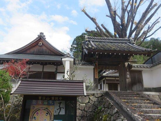 龟冈市照片