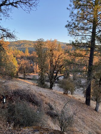 Cobb, CA: On one of the hiking trails at sunrise.