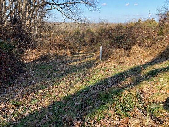 Howard County Conservancy