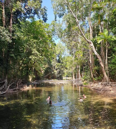 2 Day Great Barrier Reef and Daintree Rainforest, Cape Tribulation Deluxe tour: Billabong