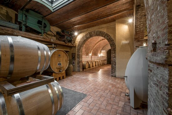 Trequanda, İtalya: Fattoria del Colle ageing Cellar. French oak barrels for the ageing of Doc Orcia wines