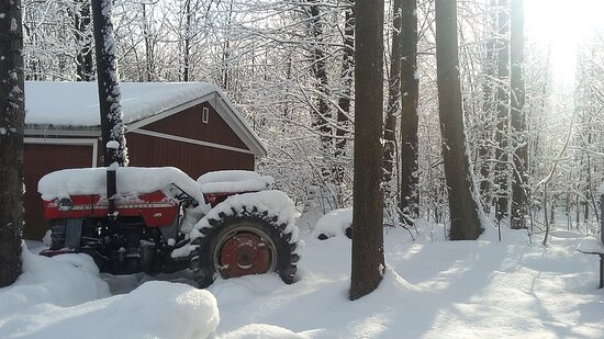 There will be no tractor work today!