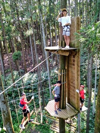 Course 3 - 15 metes up in the tree tops
