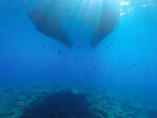 Águas claras e azuis desse jeito? Só em Arraial do Cabo