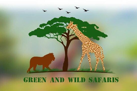 Green & Wild Safaris Ltd