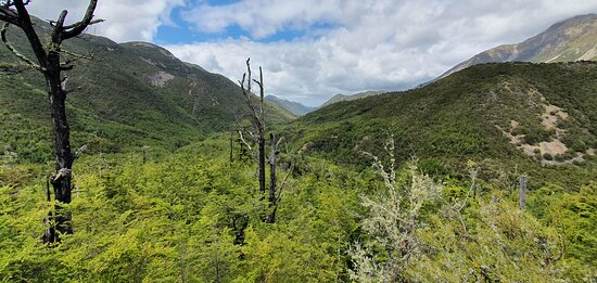 Culverden, نيوزيلندا: Views for miles