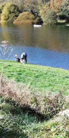 Spaxton, UK: Struggling with fish