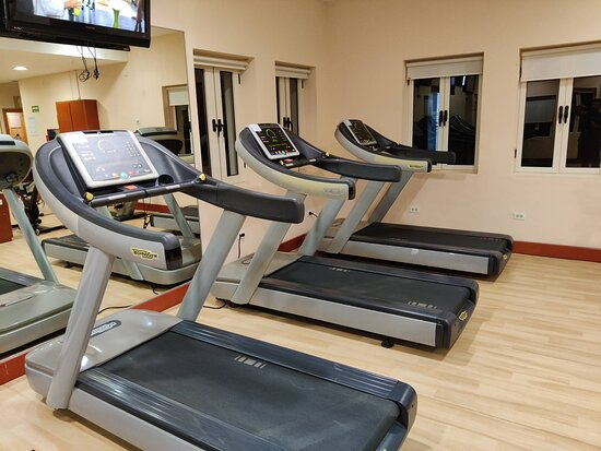 Treadmills in the gym
