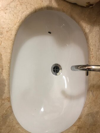 insects in bathroom sink