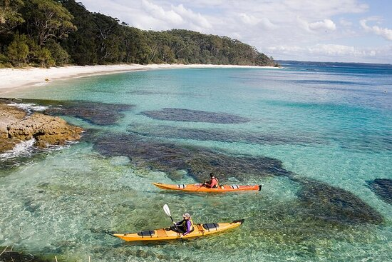 Half-Day Jervis Bay Sea Kayak Tour