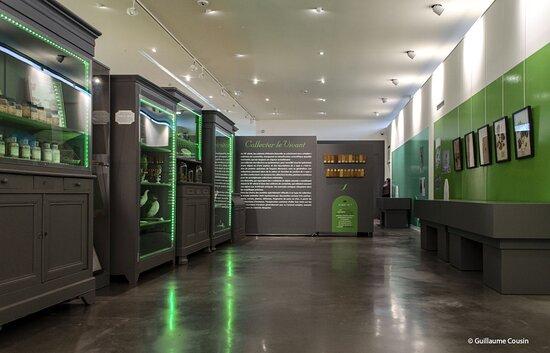 Vue d'une partie de l'exposition curieuses collections