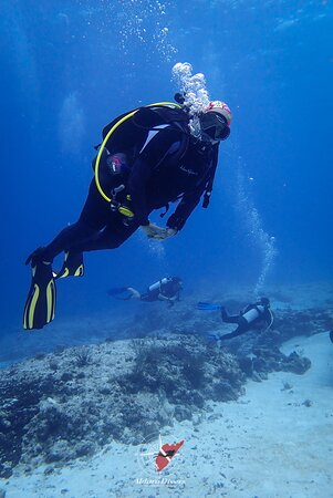 Aldora Divers - Only the best of Cozumel 031
