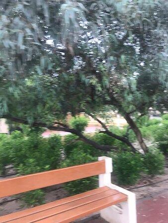 حديقة ميسلون