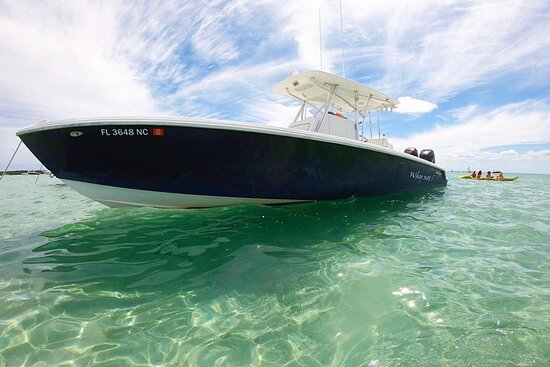 Tranquilo y Tropical | Boat charters & tours